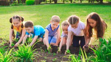 Ekologické školky